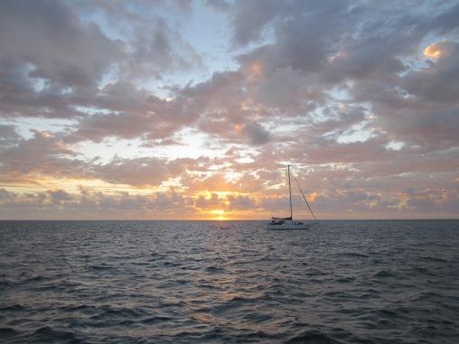2010 Cairns 11